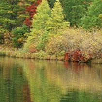 Herbststimmung im Spiegelbild