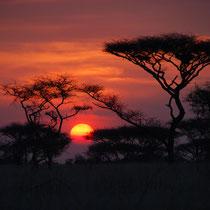 Sonnenuntergang, Tansania