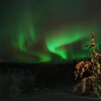 Nordlicher Lappland
