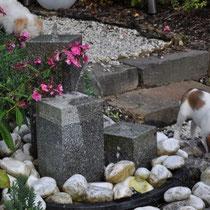 Der Brunnen fasziniert die Kleinen.