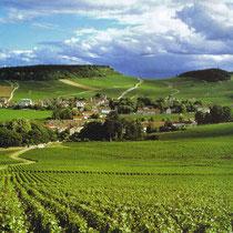 Vignoble du Mercurey