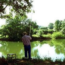 Die Saône ist in Frankreich bekannt als Fluss mit den meisten Fischen