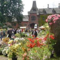 Viele verschiedene Pflanzenmärkte finden immer im Frühling und Herbst statt