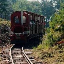"""Der Zug der zwei Täler führt Sie zum """"Parc Touristique des Combes"""""""