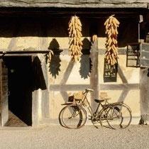 Einige Museen liegen unweit von Maison Libellule und lassen sich wunderbar mit dem Fahrrad besuchen