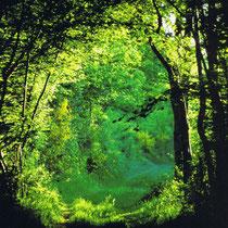 Gemütliche Spaziergänge in der flachen Bresse