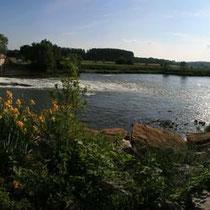 Naturreservat La Truchère-Ratenelle