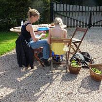 Zora und Andrea helfen mir, die Trauben abzulesen