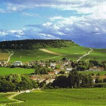 Route Touristique des Grands Vins en Bourgogne - Die Weinstrasse durch das Burgund der grossen Weine