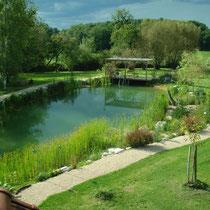 Der Bioschwimmteich von Maison Libellule