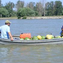 Das Boot ist das geschickteste Verkehrsmittel, um die vielen Kanäle und Verzweigungen zu bewältigen.