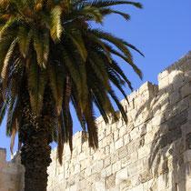 Die Jerusalemer Stadtmauer