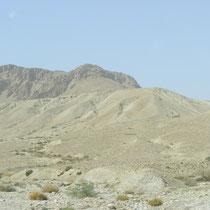 Die Negev-Wüste
