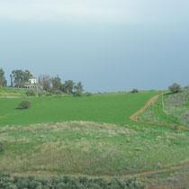 Der Berg der Seligpreisungen am See Genezareth: Hier hielt Jesus seine Bergpredigt.