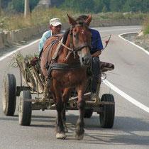 Ein altbewährtes Fortbewegungsmittel: das Pferdefuhrwerk.