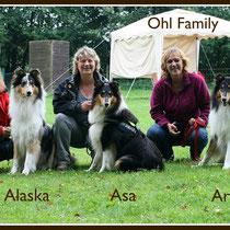 Vertreter des Ohl Family A-Wurfs (Blue Gaetano vom Ohmtalteufel x Baghira von Odenspiel)