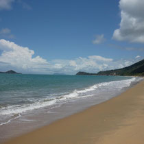 Beaches on the way from Cairns to Daintree