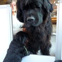 La maman Funny Girl avec son bébé