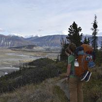 Der letzte Anstieg ist geschafft, nun geht es stetig bergab zum Camp beim Canada Creek