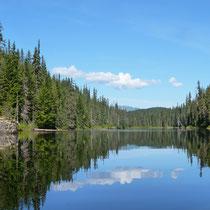 Schöne Aussichten auf der Bonney Lake Kanuroute
