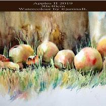 Apples II 2019 (27) / 30x40cm Watercolour by ©janinaB