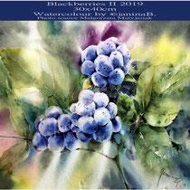 Blackberries II 2019 (27) / 30x40cm Watercolour by ©janinaB.