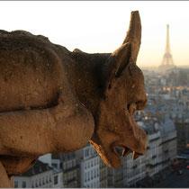 Blick von Notre Dame de Paris