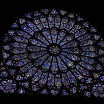 Fensterrose, Notre Dame de Paris
