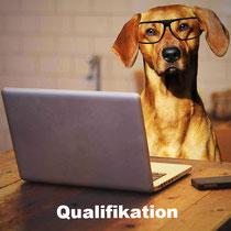 Qualifikation