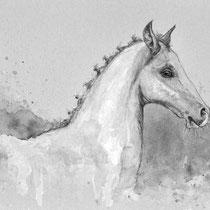 Pferd Tierportrait malen lassen