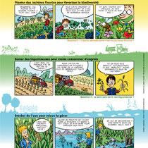 BD promotionnelle - Syndicat des Jeunes Agriculteurs