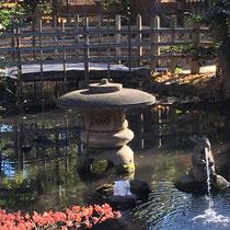 調神社の池