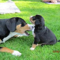 Anca und Bella (Bianca)