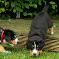 Bella und Janosch