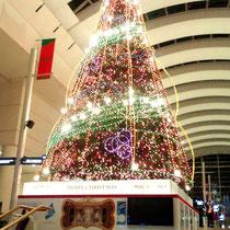 12月に入って会場のあるみなとみらいはすっかりクリスマス。師走ですね。