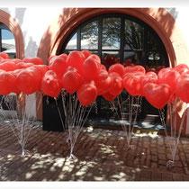 Ballon-Weitflug Hochzeit Schloß Grumbach Rimpar