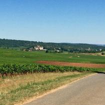 Mercurey: Mit dem eBike bei 41° C durch die Burgunder Rebberge.