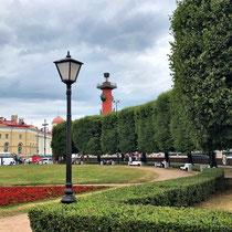 St. Petersburg | Stadtrundfahrt | Wassilewskij-Insel | Eine der Rostra-Säulen und Gebäude des Museusm für Anthropologie und Enthnographie