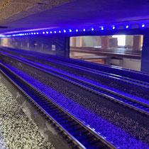 2021 | 10-gleisiger Schattenbahnhof.