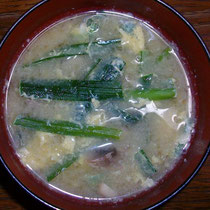 ニラ玉味噌汁  昼・夜