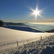 Winterlandschaft am Schauinsland/Schwarzwald, nur ca. 20 Kilometer von der Ferienwohnung Bad Krozingen.