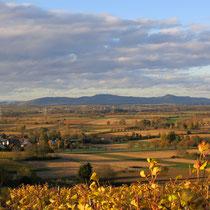 Das Markgraefler Land im Herbst.