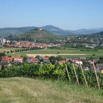 Blick auf die Staufener Burg von Süden.
