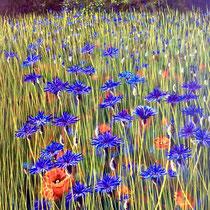 'Cornflowers'