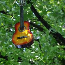 Gitarrenbäume