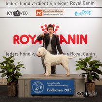 BOB Eindhoven