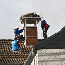 Geschafft, Nest und Unterkonstruktion werden befestigt