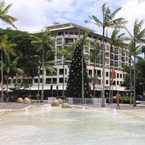 Frohe Weihnachten bei 30 Grad tropischer Wärme