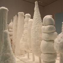 Ein weißer Wald