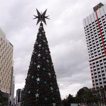 Ein riesen Tannenbaum mitten in der Stadt - Australien gibt sich Mühe!